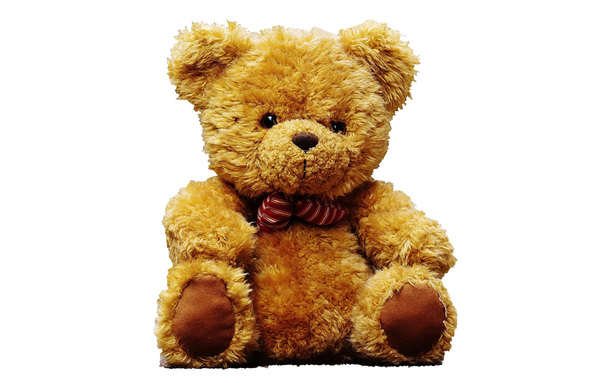 teddy bear 2771252 1920